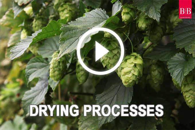 Trocknungsprozesse Kabellos überwachen – Das Kiro Anwendungsvideo Für Trocknungsprozesse